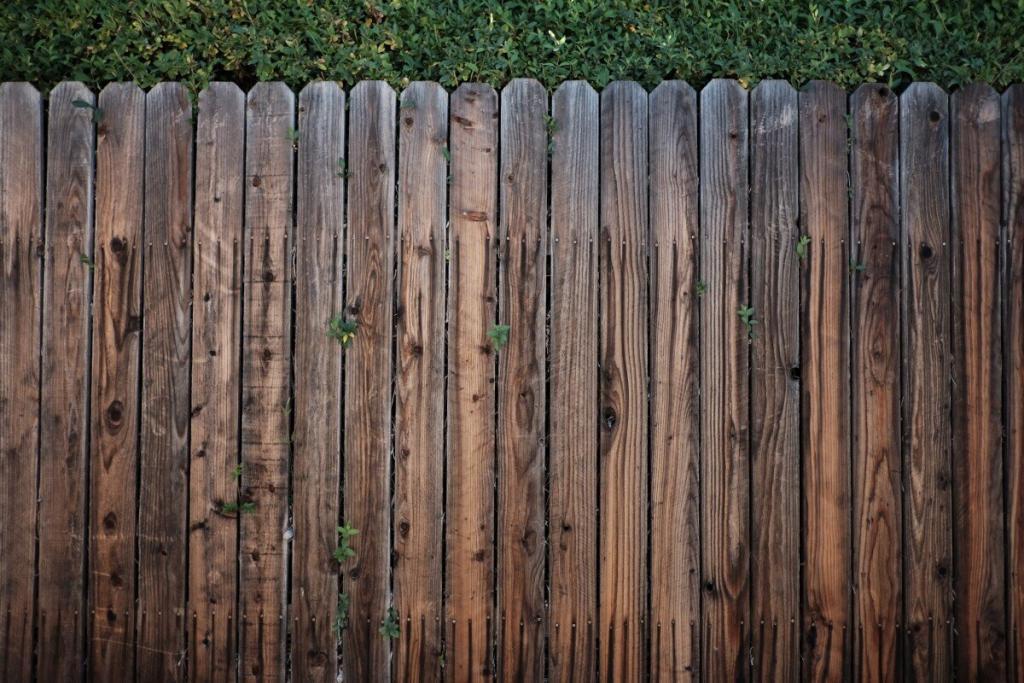 Conseils pour installer une palissade en bois
